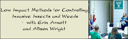Low Impact Methods for Controlling Invasive Insects and Weeds -  with Erin Arnott and Allison Wright