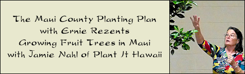 Growing Fruit Trees On Maui - with Jamie Nahl