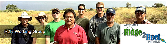 Maui Association of Landscape Professionals | The mission of the